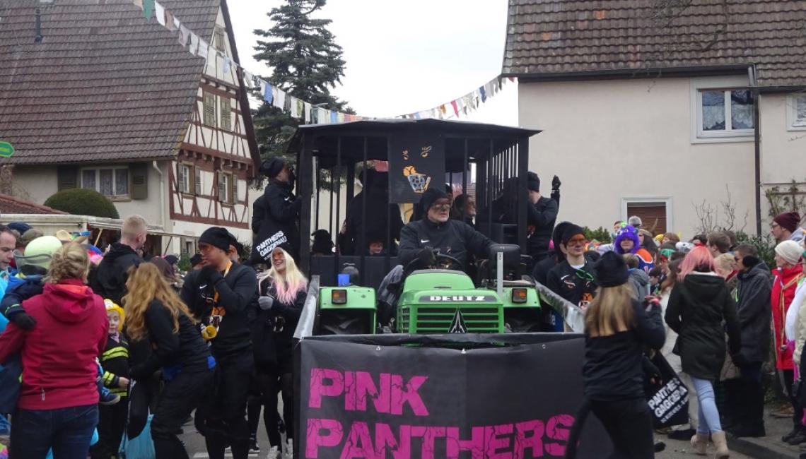 2018_Faschingsumzug Panthers 024